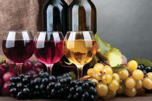 Vino uva e tipi