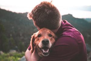 cane benefici salute