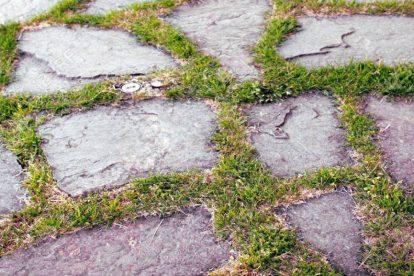 pavimento giardino img